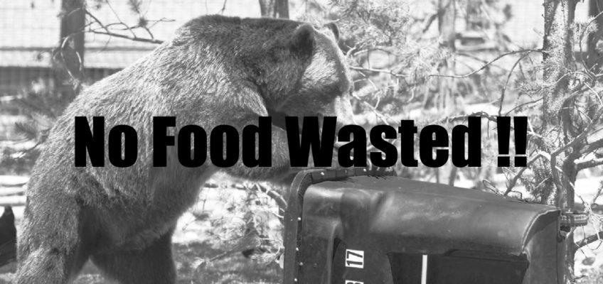 No Food Wasted:当社の取り組みのご紹介